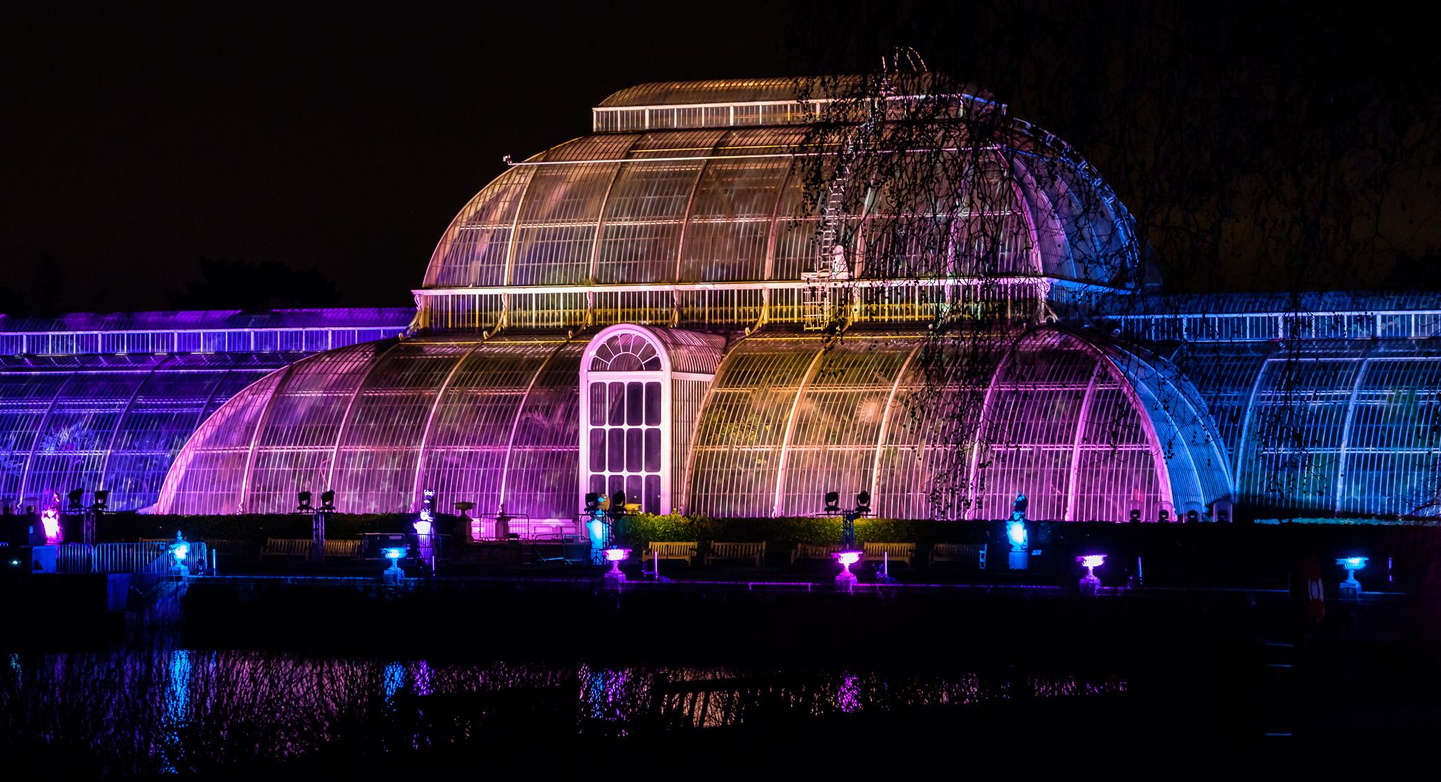 Christmas at Kew 2